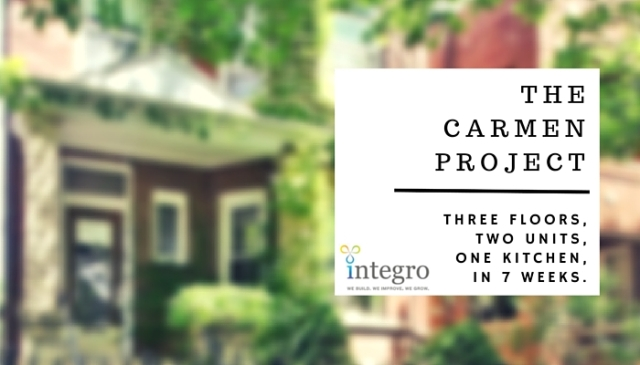 Integro - Blog - Carmen Project (3)